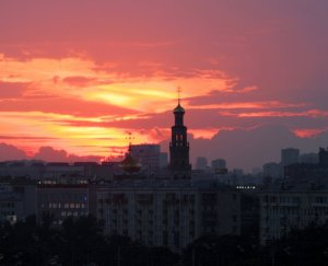 Москва. Среда обитания