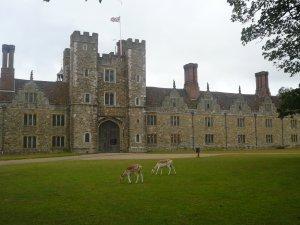 На территории парка находится замок, построенный в 15 веке Архиепископом Кентерберийским.