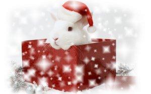 С Новым Годом всех!!!!!!!!!!!!