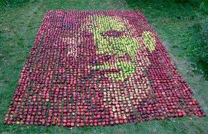 Яблоки на траве