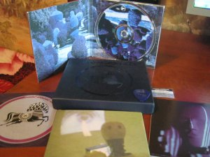 На днях deluxe пришёл, хорошего альбома.