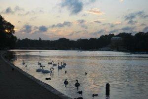 Гайд-парк:  поздний вечер