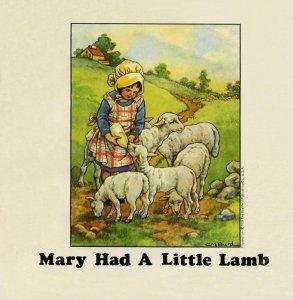 Пол Маккартни рассказал о старых овцах на своей ферме