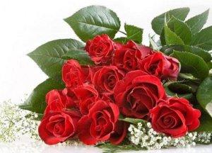 Дорогая Анечка с днем рождения тебя! Желаю тебе счастья и любви, ты их заслуживаеш больше всех! Оставайся всегда такой же красивой , доброй и обоятельной.