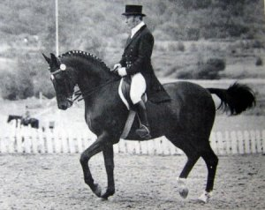 Судьба спортивных лошадей тоже бывает трагичной. Сколько их, больше не годных ни в спорт, ни в разведение, закончили свою жизнь на мясокомбинате или в прокате, как олимпиец Ихор (под Кизимовым). Сами судите, насколько это справедливо: любой желающий может «забивать гвозди» на спине ветерана, «дергать веревочками» его нежный рот… Уберегите своего коня от такой участи, если вы испытываете к нему хоть каплю благодарности.