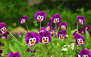 С ДНЕМ РОЖДЕНИЯ!!!  Keep smiling))