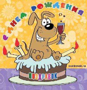 Поздравляю с днём рождения,Дима! Счастья,здоровья,творческих удач!