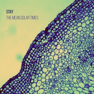 Stay - The Mean Solar Times (2016)