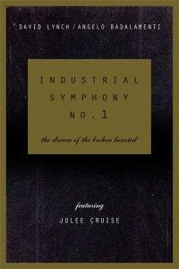 2. Индустриальная Симфония №1: Сон Девушки С Разбитым Сердцем