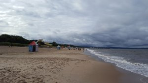 Plaża Brzeźno, так называется пляж.