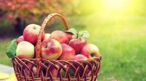 С Яблочным спасом!