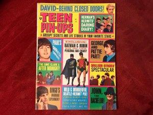 Teen Pin-ups  декабрь 1966