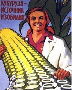 У Ивана Кузина большая кукурузина!