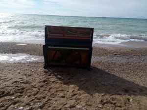 round С учётом того, что берег песчаный, вода не на столько кристальная, как на скалистых берегах. Технически у тех кто близко к морю в данной местности нет такой возможность сливать что либо в море, может и ошибаюсь но сложно представимо как они покупают километры дорогих труб что б вывести канализацию в море. А мы в 12 мин ходьбы от моря, так что 4 выгребные ямы. Ну и Крым всё таки полуостров, омываемый со всех сторон, Кавказу меньше повезло из за течений которые выносят много прелестей на берег.