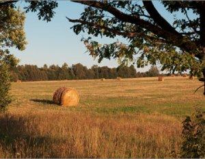 Лето, наверное, самое чудное время года. Оно ошеломляет обилием трав и пахучих цветов, ярким солнцем и проливными дождями. Его воспевали многие поэты, вдохновившись красотами летней поры. Однако окончание сказочного лета - не повод для уныния. Хотя кажется, что лето промелькнуло. Вот парочка стихов про ушедшее лето https://woman365.ru/cop619_stih-stihi-ob-ushedshem-lete/