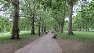 Green park, London, UK, summer '19