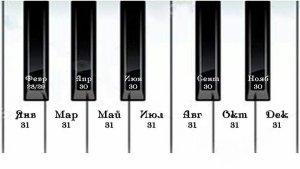 Клавишникам легче всего ориентироваться в количестве дней любого месяца. (Для не клавишников нужно уточнить, что здесь октава начинается не с ДО, а с ФА)