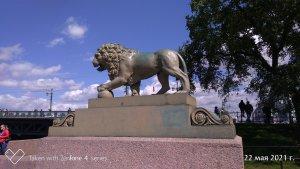 И любимый лев...