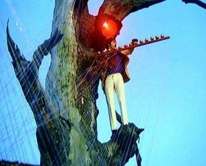 Вот в качестве подтверждения по поводу дерева и неоднозначности трактовки: Не так уж он и одинок - на дереве Пол, несмотря на высоту этого самого дерева. Эти кадры в клипе идут как раз на фоне второго куплета. Получилось - иногда Джону одиноко (в интервью он говорит о том, как хорошо было бы оказаться в компании Кэрролла, Уайльда или Дилана Томаса), а бывает, на его дереве - Пол и оба они единомышленники. Серьезное признание, надо сказать, сделанное своему коллеге.