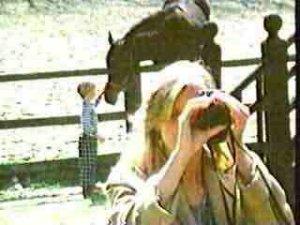 20 Лошадей все-таки несоизмеримо больше :))