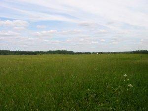 И во поле сегодня тоже был свой кайф!