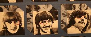 3. Глаза на фотографиях Ринго видны чётко.